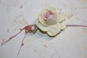 Веточка розы с ягодками