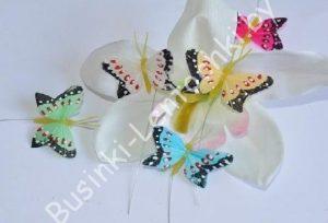Бабочки (5см)